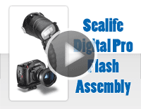 SeaLife DC1200 with Digital Pro Flash: Install & Setup in Less Than 2 Mins