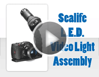 Sealife LED Video Light Assembly